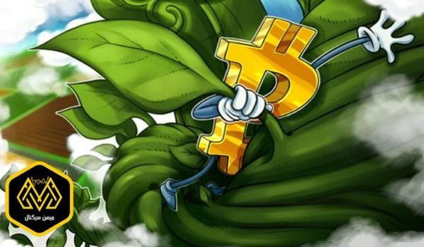 گذر قیمت بیت کوین از 9500 دلار