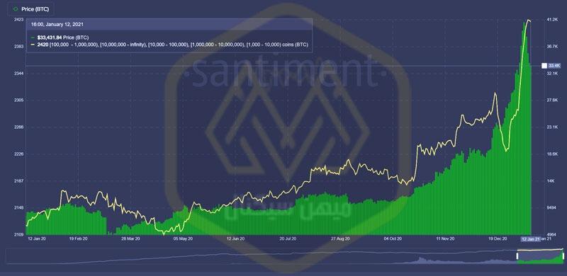 نمودار توزیع دارندگان بیت کوین