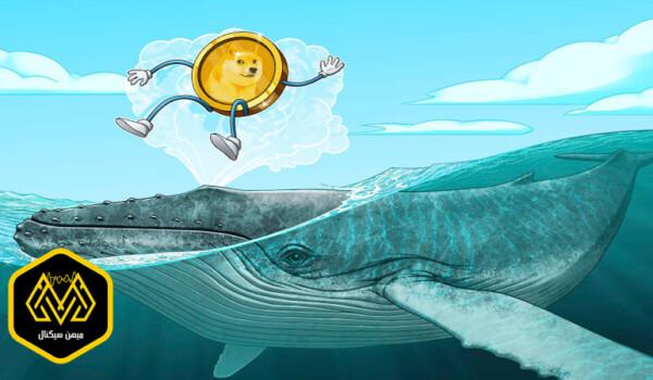 فقط نهنگ ها دوج کوین های خود را منتقل کرده اند