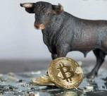3 دلیل رشد ناگهانی قیمت بیت کوین