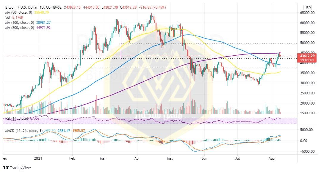 نمودار یک روزه قیمت بیت کوین / دلار